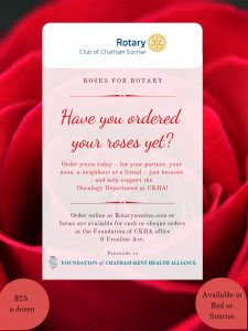 Roses for Rotary